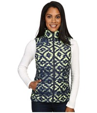 The North Face Nuptse 2 Vest Cosmic Blue D Kat Print Women's Vest Green