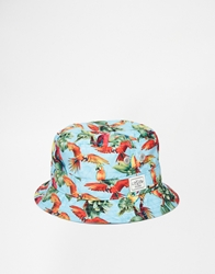 Cayler And Sons Paradise Bucket Hat Blue