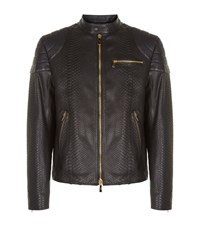 Billionaire Python Moto Jacket Male Black