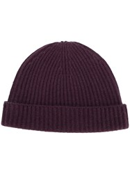 N.Peal Ribbed Beanie Pink And Purple