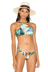 Vitamin A Cozumel High Neck Bikini Top Green