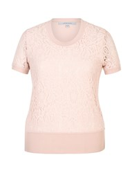 Chesca Corded Lace Trim Camisole Pink