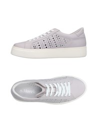 Andrea Morelli Sneakers Dove Grey
