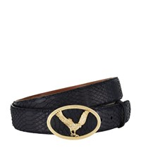 Billionaire Sunbeam Python Belt Unisex Black