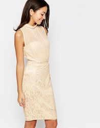 Little Mistress Lace Bodycon Dress With Sheer Top Beige