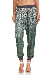 Gypsy 05 Monreale Printed Pants Green
