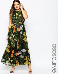 Asos Curve Maxi Dress In Botanical Floral Multi