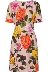 Dolce And Gabbana Floral Print Cady Dress Pastel Pink
