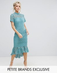Paper Dolls Petite All Over Lace High Neck Pencil Dress With Frill Hem Green