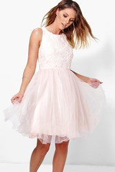 Boohoo Ally Applique Top Mesh Skater Dress Pink