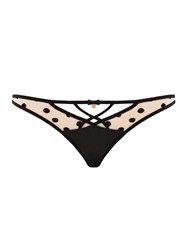 Curvy Kate Scantilly Showtime Thong Black