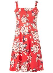 Dorothy Perkins Tall Red Floral Sheer Camisole Dress