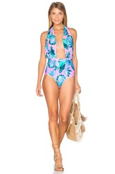 6 Shore Road Cabana One Piece Swimsuit Pink