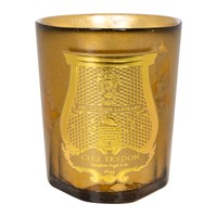 Cire Trudon Solis Rex Gold Limited Edition Candle
