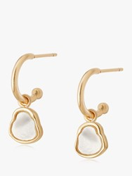 Daisy London Isla Mother Of Pearl Hoop Drop Earrings Gold