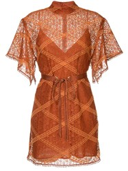 Manning Cartell Lace Layer Dress Brown