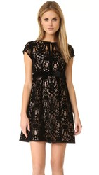 Nanette Lepore Boudoir Lace Dress Black