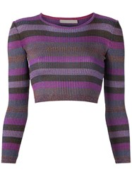 Cecilia Prado Knit Crop Top Women Acrylic Lurex Viscose P Pink Purple