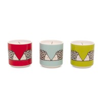 Scion Spike Candle Set Of 3
