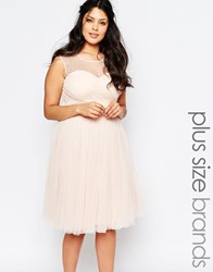 Little Mistress Plus Embellished Prom Dress Pink
