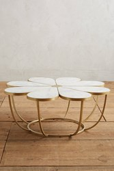 Anthropologie Boutonniere Coffee Table White