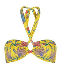 Lazul Tropical Flower Bandeau Bikini Top Female Multi