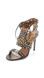 Aquazzura Rebel Studded Haircalf Pumps Cheetah