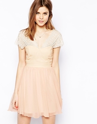 Elise Ryan Lace Skater Dress With Scallop Back Nude