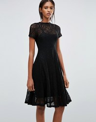 Goldie Romantics Lace Flared Midi Dress Black
