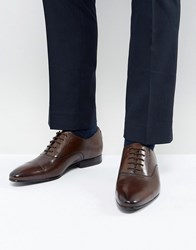Ted Baker Murain Leather Oxford Shoes In Brown Brown