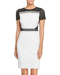 Aqua Lace Pencil Dress White Black