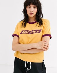 Dickies Ringer T Shirt With Large Front Logo Yellow