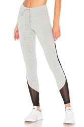 Strut This Crawford Legging Light Gray