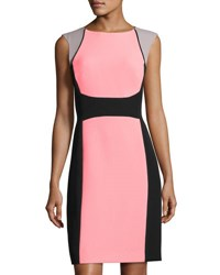 Tahari By Arthur S. Levine Colorblock Sleeveless Crepe Dress Pink Black