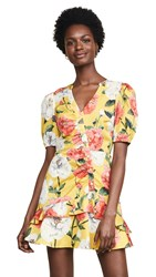 Parker Minna Dress Lemon Wildflower