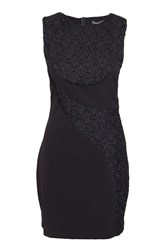 Indulgence Bodycon Dress Detail Black Lace