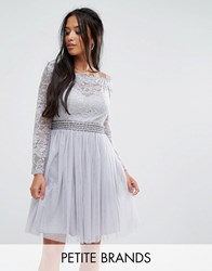 Little Mistress Petite Off Shoulder Lace Top Mini Prom Skater Dresss Gray