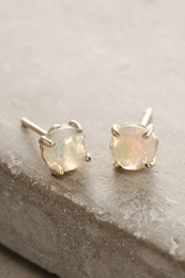 Anthropologie 14K Gold Round Stud Earrings Mint