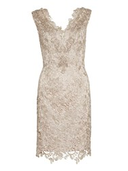 Gina Bacconi Lace Dress With Beaded Neck And Scarf Taupe