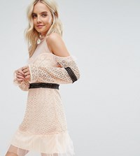 True Decadence Petite Cold Shoulder All Over Lace Mini Dress With Contrast Waistband And Mesh Hem Nude Pink