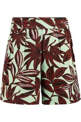 Etro Printed Stretch Cotton Shorts Brown