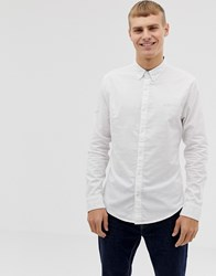 Hollister Icon Logo Button Down Oxford Shirt Muscle Skinny Fit In White