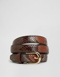 Asos High Shine Snake Skinny Belt Brown