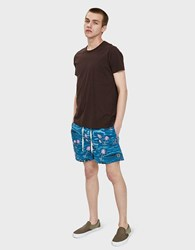 Insight Hotel California Swim Short In Aqua