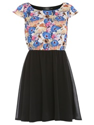 Pussycat Floral Print Day Dress Black