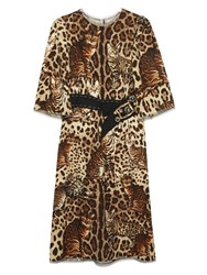 Dolce And Gabbana Cat Print Mid Length Dress Brown