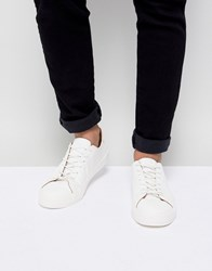 New Look Trainers In White