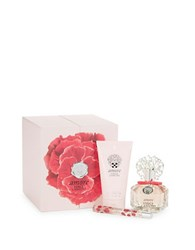 Vince Camuto Amore Gift Set 179.00 Value No Color