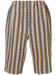 Christophe Lemaire Contrast Striped Shorts Neutrals