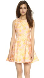 Cynthia Rowley Cherry Blossom Fit And Flare Dress Marigold Multi